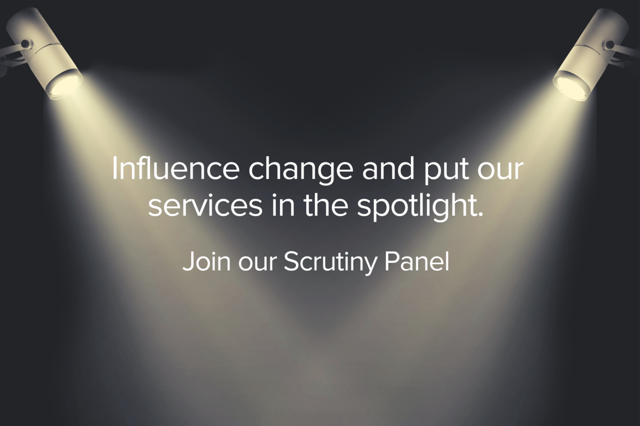 Scrutiny Panel